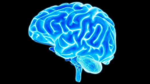 mental model modelo mental